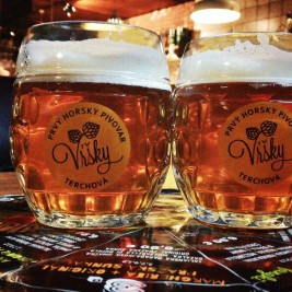 Prvý horský pivovar Vŕšky - Svetlá 11-tka