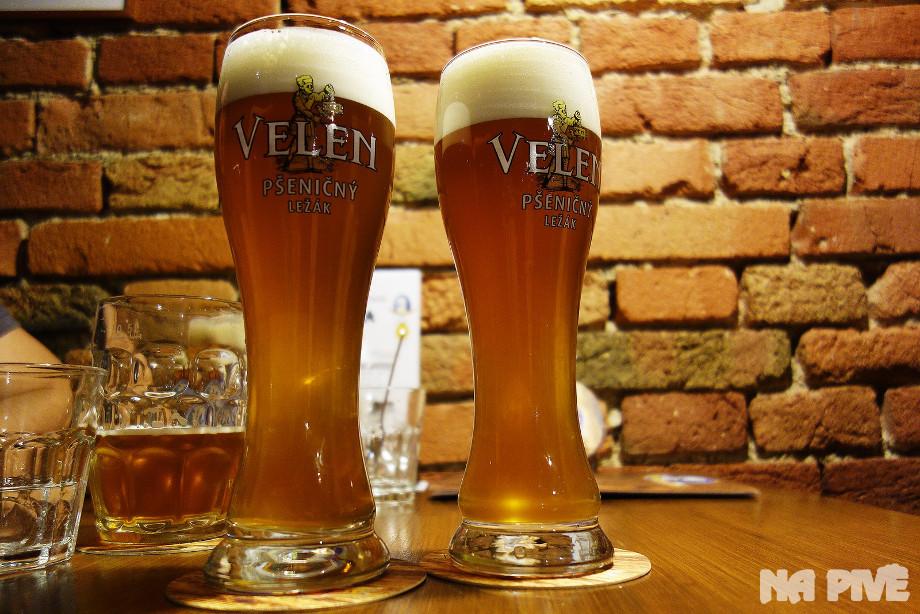 Velen, pšeničné pivo