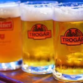 Pivo Trogár